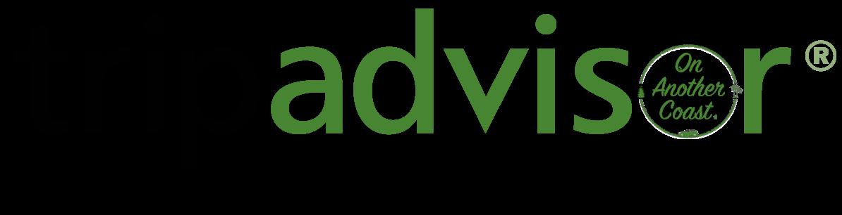 trip-advisor-ad